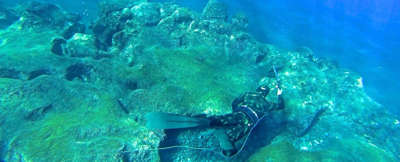 Polowanie podwodne, Magda robi coraz lepsze fotki