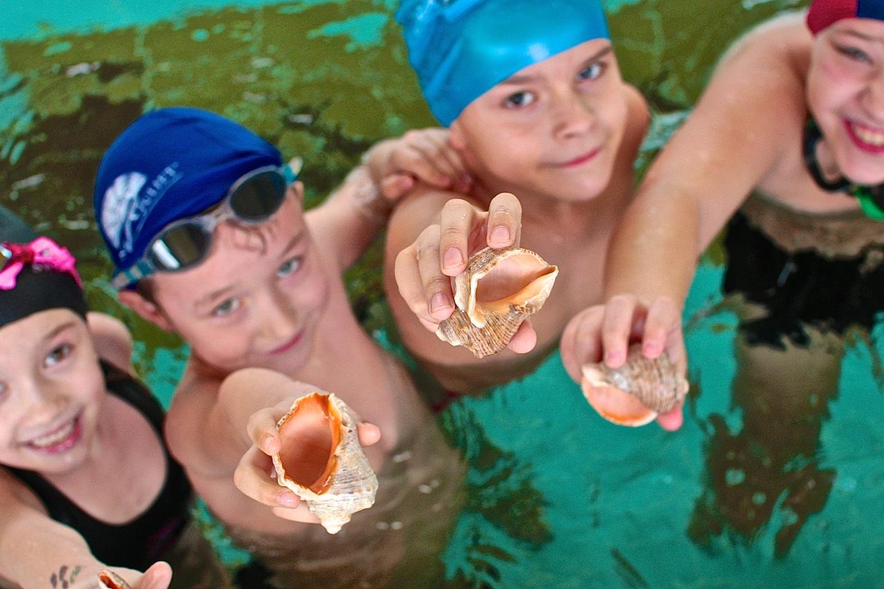 szkoła pływania nauka pływania Elbląg Grupa Wodna
