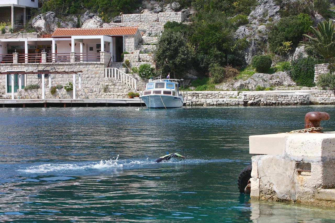 openwater Chorwacja trening pływacki