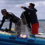 oboz_windsurfingowy_0011