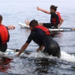 oboz_windsurfingowy_0115